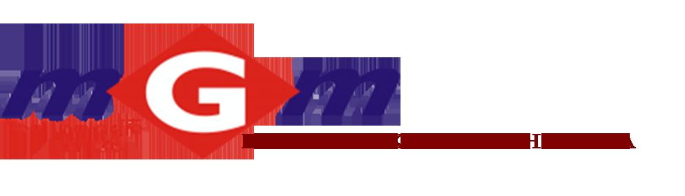 MGM MICHAŁ PAPRZYCKI - Elektronika samochodowa